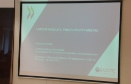 Dialogue on Regional Mobility of Professionals in CEFTA, 29 April 2014, Brussels